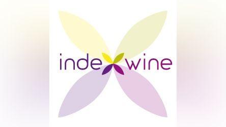 Competitive Data su Index Wine